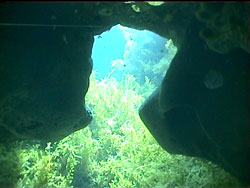 Eingang Twin Cave